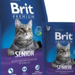 Различия между кормами премиум и эконом-класса для кошек