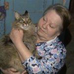Чем на всю страну прославилась обычная бездомная кошка Маша