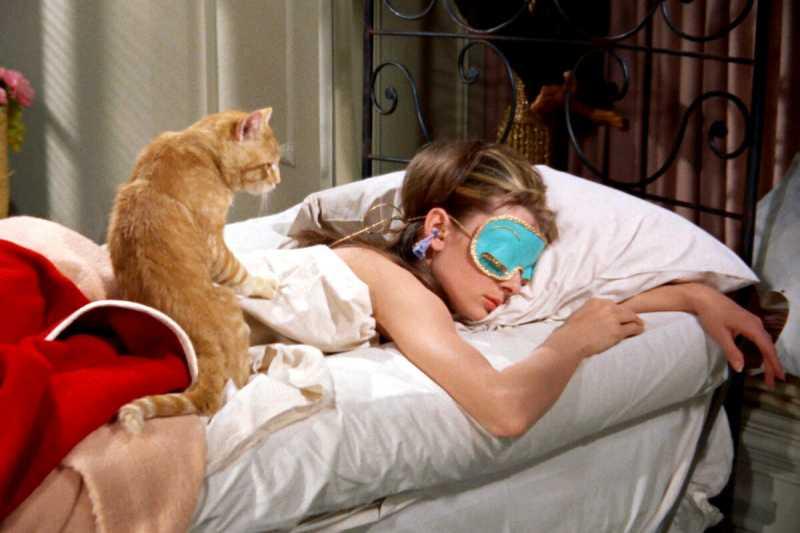 ТОП-6 причин разрешить коту спать в Вашей постели