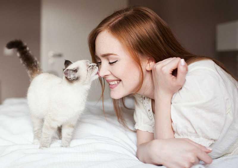 Ученые назвали 3 причины, почему кошки больше любят женщин, чем мужчин