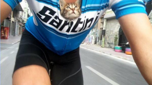 Велосипедист отправился на прогулку, а по дороге нашел маленькую пищащую голодную кошечку - он не смог проехать мимо