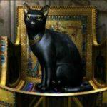 Как кошки помогли захватить неприступную крепость - а все из-за любви египтян к этим милым животным