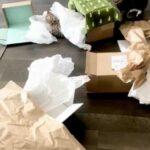 Хозяева решили порадовать своего питомца и сделали ему необычное средство передвижения из коробки