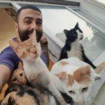 Музыкант спас и приютил 9 котов – теперь каждую ночь, когда он играет, они дарят ему вдохновение