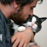 5 способов улучшить отношения с людьми, благодаря кошкам