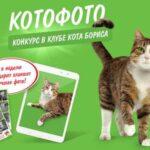 Кто же на самом деле является этим самым котом Борисом из рекламы сухих кормов Kitekat