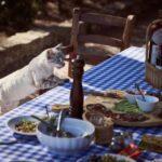Почему кошки едят несъедобные предметы?